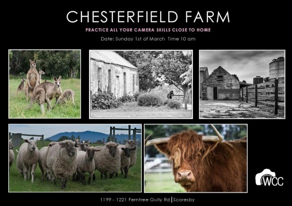 chesterfield-farm