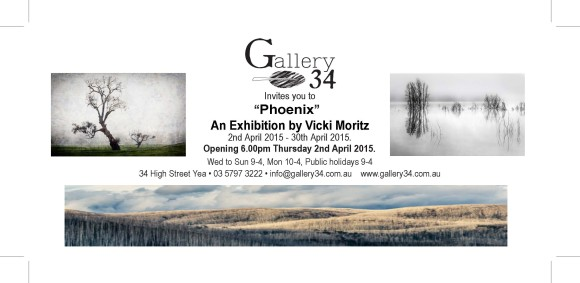 Gallery 34 Invite Vicki Moritz April 2015 (d)